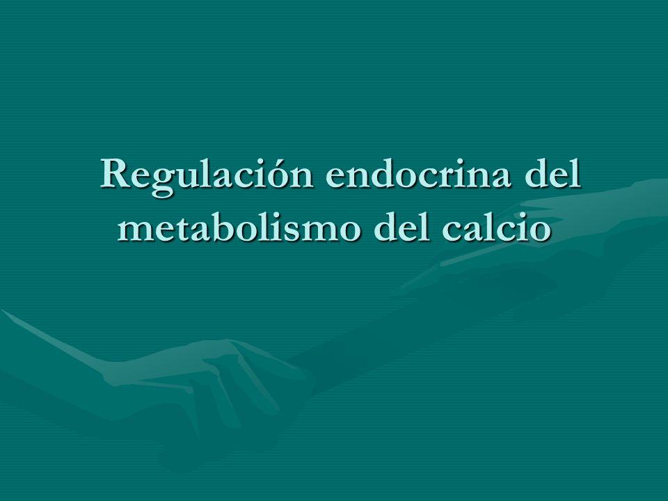 Regulación endocrina del metabolismo del calcio Regulación endocrina del metabolismo del calcio