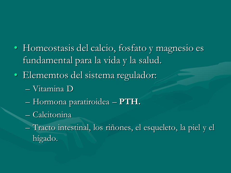 Homeostasis del calcio, fosfato y magnesio es fundamental para la vida y la salud.Homeostasis del calcio, fosfato y magnesio es fundamental para la vi