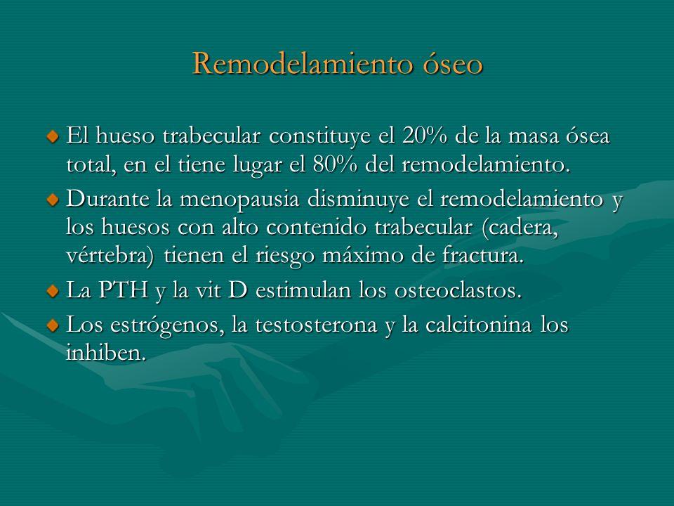 Remodelamiento óseo El hueso trabecular constituye el 20% de la masa ósea total, en el tiene lugar el 80% del remodelamiento. Durante la menopausia di