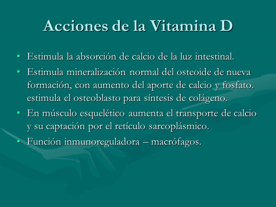 Acciones de la Vitamina D Estimula la absorción de calcio de la luz intestinal.Estimula la absorción de calcio de la luz intestinal. Estimula minerali