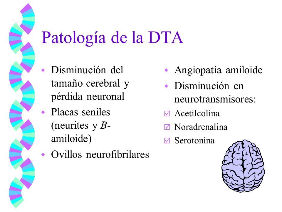 Patología de la DTA w Disminución del tamaño cerebral y pérdida neuronal w Placas seniles (neurites y B- amiloide) w Ovillos neurofibrilares w Angiopa