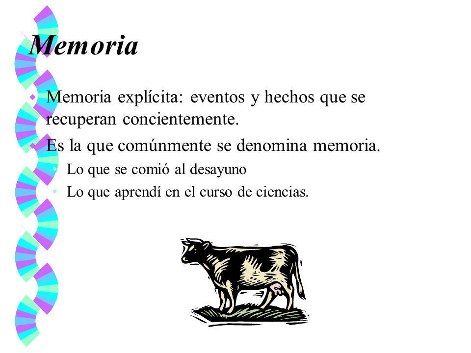 Memoria w Memoria explícita: eventos y hechos que se recuperan concientemente. w Es la que comúnmente se denomina memoria. Lo que se comió al desayuno