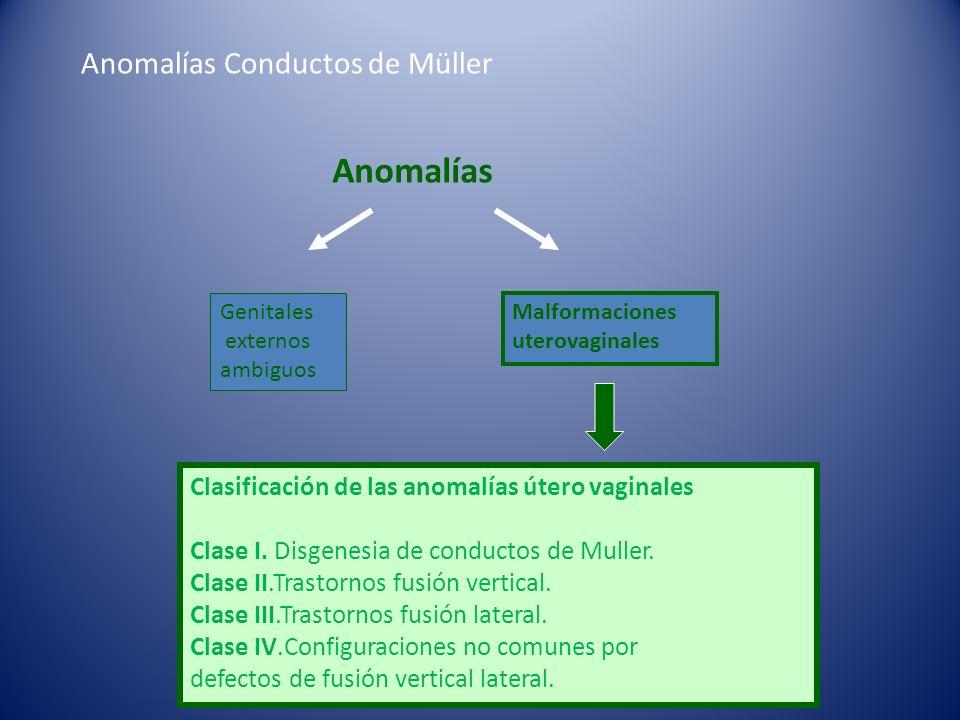 Anomalías Conductos de Müller Clasificación de las anomalías útero vaginales Clase I. Disgenesia de conductos de Muller. Clase II.Trastornos fusión ve