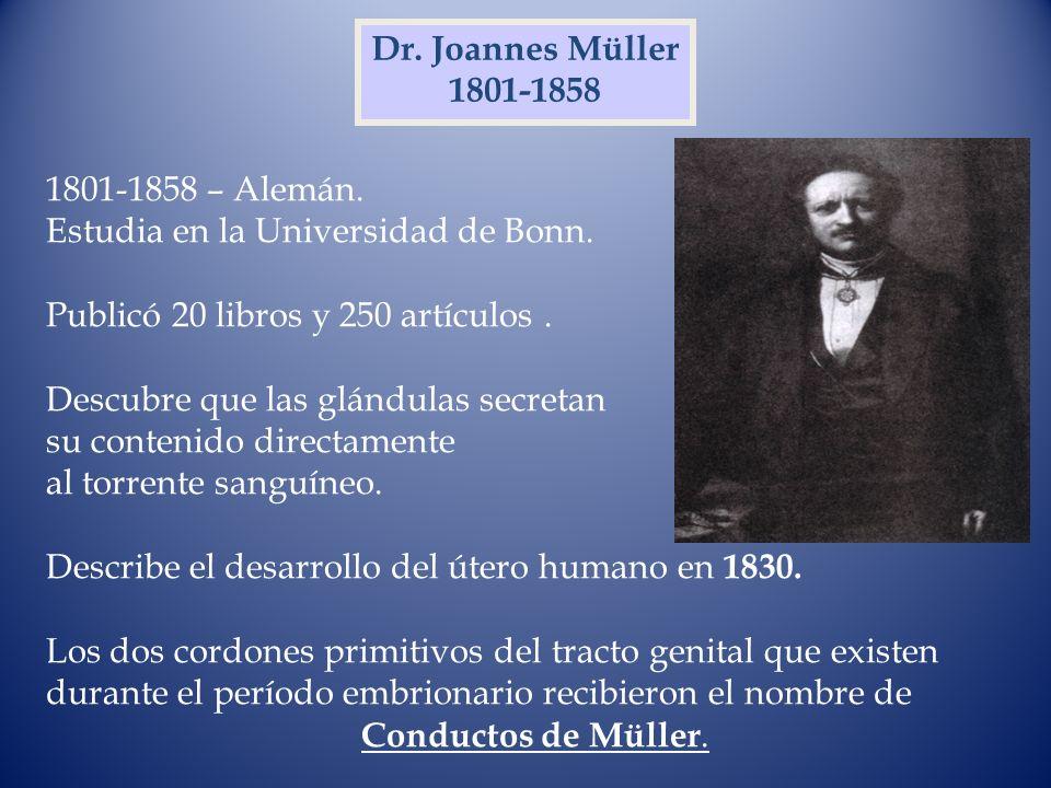 Dr. Joannes Müller 1801-1858 1801-1858 – Alemán. Estudia en la Universidad de Bonn. Publicó 20 libros y 250 artículos. Descubre que las glándulas secr
