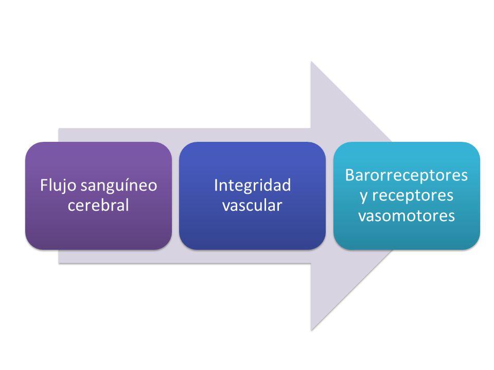 Flujo sanguíneo cerebral Integridad vascular Barorreceptores y receptores vasomotores