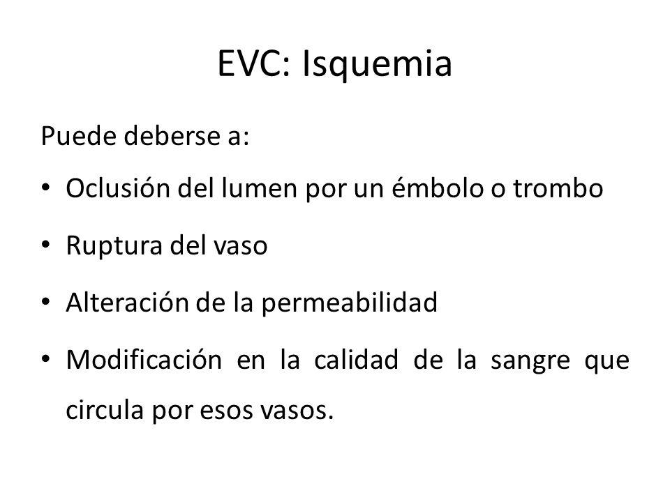 EVC: Isquemia Puede deberse a: Oclusión del lumen por un émbolo o trombo Ruptura del vaso Alteración de la permeabilidad Modificación en la calidad de