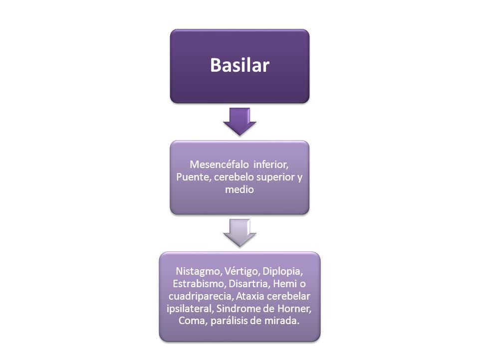 Basilar Mesencéfalo inferior, Puente, cerebelo superior y medio Nistagmo, Vértigo, Diplopia, Estrabismo, Disartria, Hemi o cuadriparecia, Ataxia cereb