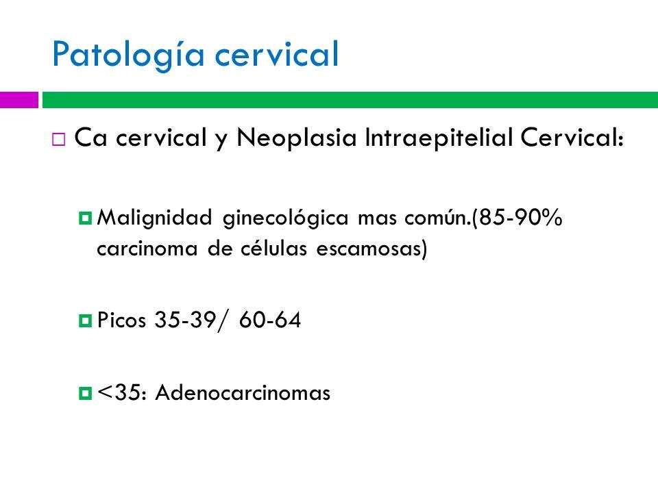 Patología cervical Ca cervical y Neoplasia Intraepitelial Cervical: Malignidad ginecológica mas común.(85-90% carcinoma de células escamosas) Picos 35