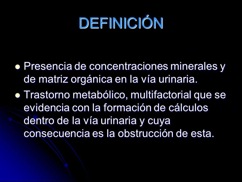 DEFINICIÓN Presencia de concentraciones minerales y de matriz orgánica en la vía urinaria. Presencia de concentraciones minerales y de matriz orgánica