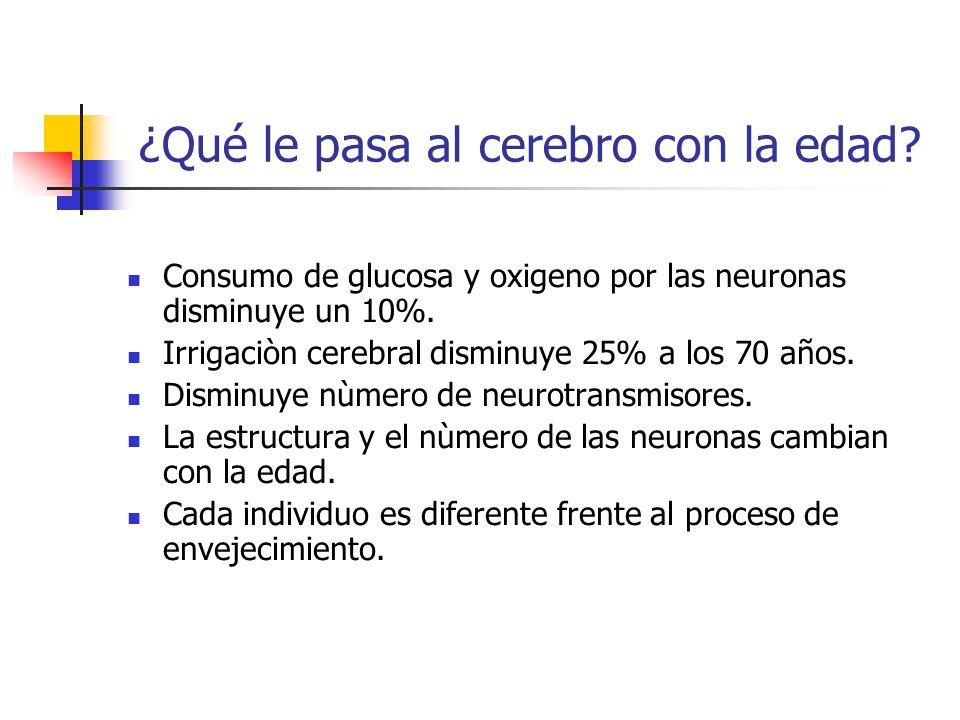 ¿Qué le pasa al cerebro con la edad? Consumo de glucosa y oxigeno por las neuronas disminuye un 10%. Irrigaciòn cerebral disminuye 25% a los 70 años.