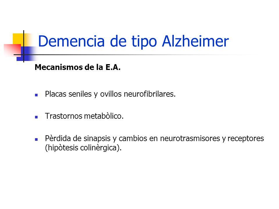 Demencia de tipo Alzheimer Mecanismos de la E.A. Placas seniles y ovillos neurofibrilares. Trastornos metabòlico. Pèrdida de sinapsis y cambios en neu