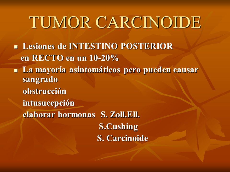 TUMOR CARCINOIDE Lesiones de INTESTINO POSTERIOR Lesiones de INTESTINO POSTERIOR en RECTO en un 10-20% en RECTO en un 10-20% La mayoría asintomáticos