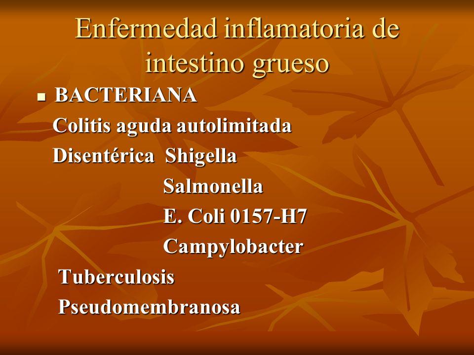Enfermedad inflamatoria de intestino grueso BACTERIANA BACTERIANA Colitis aguda autolimitada Colitis aguda autolimitada Disentérica Shigella Disentéri