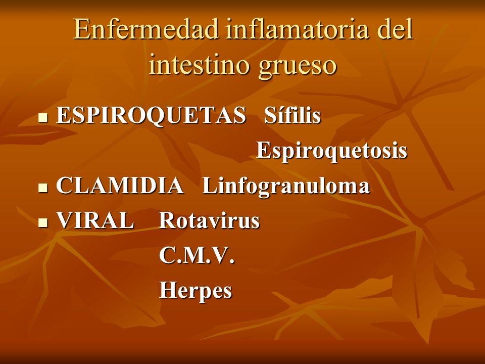 Enfermedad inflamatoria del intestino grueso ESPIROQUETAS Sífilis ESPIROQUETAS Sífilis Espiroquetosis Espiroquetosis CLAMIDIA Linfogranuloma CLAMIDIA