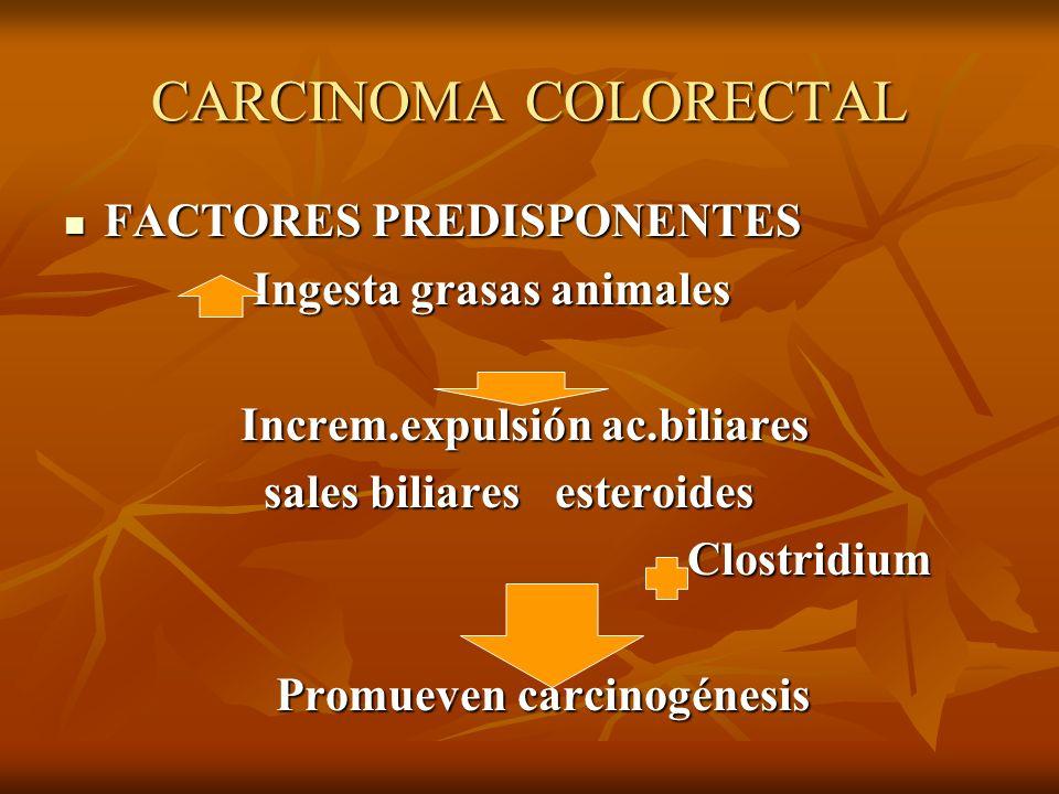 CARCINOMA COLORECTAL FACTORES PREDISPONENTES FACTORES PREDISPONENTES Ingesta grasas animales Ingesta grasas animales Increm.expulsión ac.biliares Incr