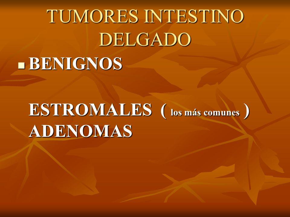 TUMORES INTESTINO DELGADO BENIGNOS BENIGNOS ESTROMALES ( los más comunes ) ADENOMAS ESTROMALES ( los más comunes ) ADENOMAS