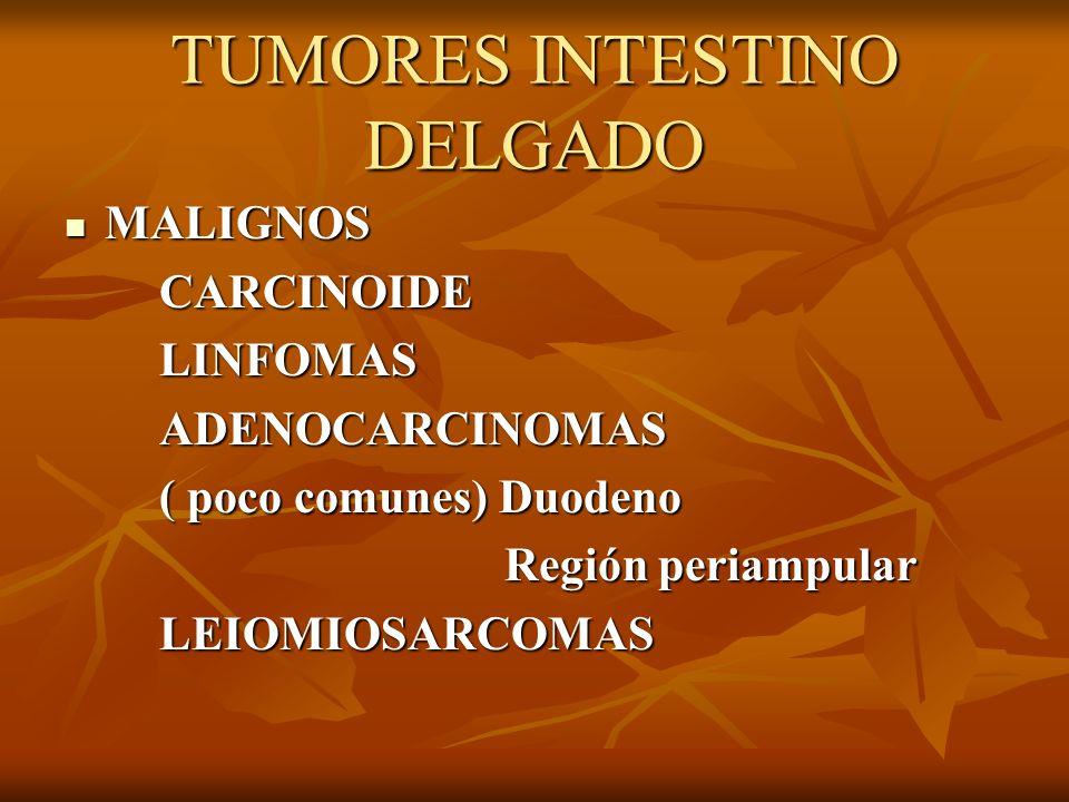 TUMORES INTESTINO DELGADO MALIGNOS MALIGNOS CARCINOIDE CARCINOIDE LINFOMAS LINFOMAS ADENOCARCINOMAS ADENOCARCINOMAS ( poco comunes) Duodeno ( poco com