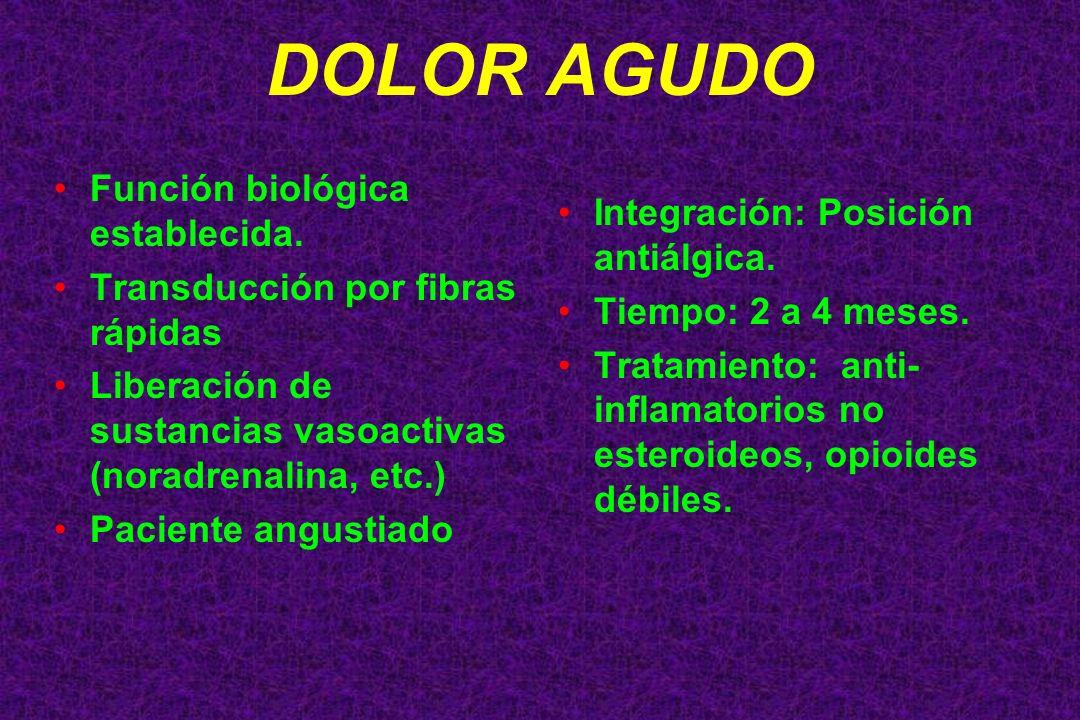 Función biológica establecida. Transducción por fibras rápidas Liberación de sustancias vasoactivas (noradrenalina, etc.) Paciente angustiado Integrac