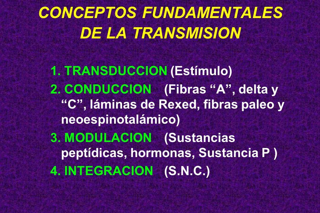 CONCEPTOS FUNDAMENTALES DE LA TRANSMISION 1. TRANSDUCCION (Estímulo) 2. CONDUCCION(Fibras A, delta y C, láminas de Rexed, fibras paleo y neoespinotalá