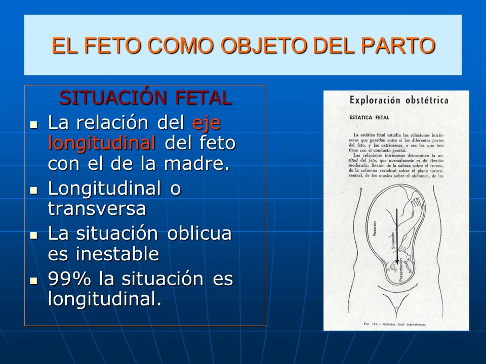 EL FETO COMO OBJETO DEL PARTO PRESENTACIÓN FETAL Es la parte del feto en contacto con el estrecho superior, ocupándolo en gran parte, puede por sí misma dar lugar a un mecanismo de parto Es la parte del feto en contacto con el estrecho superior, ocupándolo en gran parte, puede por sí misma dar lugar a un mecanismo de parto La parte presentada determina la presentación del feto La parte presentada determina la presentación del feto En situación longitudinal la parte presentadaEn situación longitudinal la parte presentada Cabeza: presentación cefálica Cabeza: presentación cefálica Nalgas: presentacion podálica Nalgas: presentacion podálica