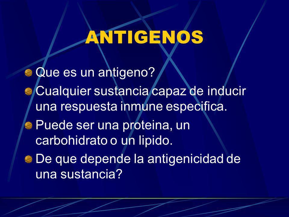 ANTIGENOS Que es un antigeno? Cualquier sustancia capaz de inducir una respuesta inmune especifica. Puede ser una proteina, un carbohidrato o un lipid