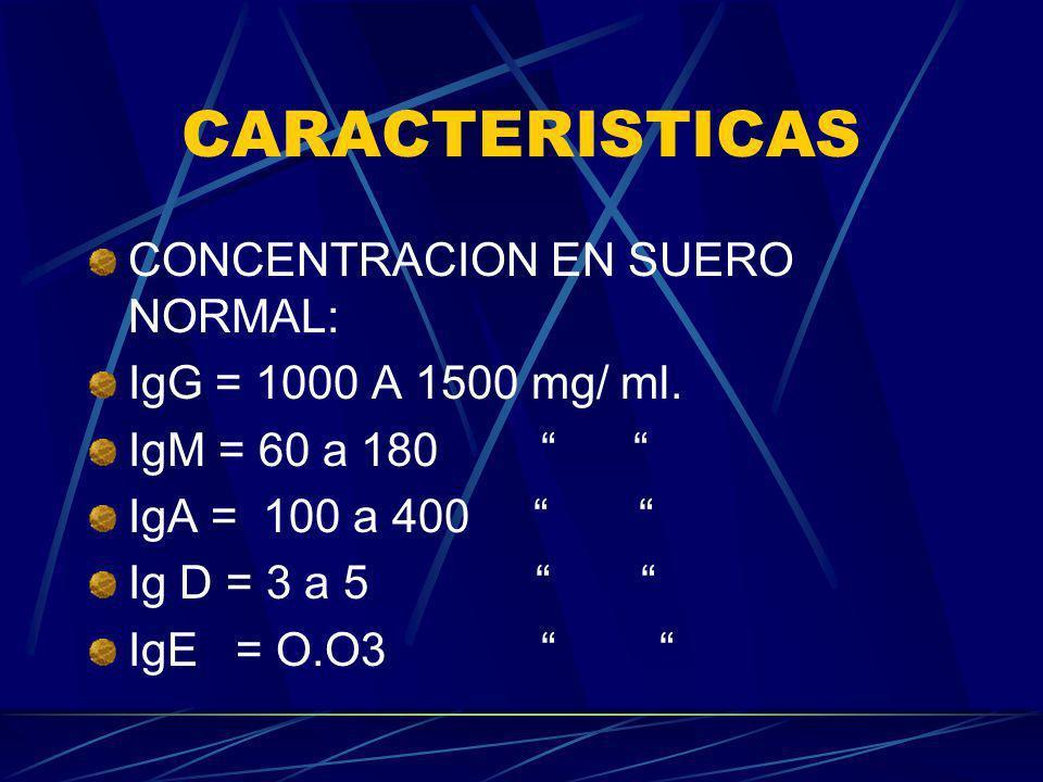 CARACTERISTICAS CONCENTRACION EN SUERO NORMAL: IgG = 1000 A 1500 mg/ ml. IgM = 60 a 180 IgA = 100 a 400 Ig D = 3 a 5 IgE = O.O3