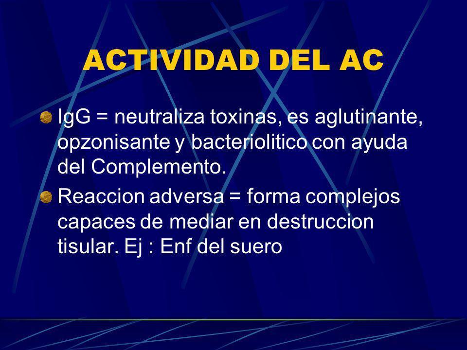 ACTIVIDAD DEL AC IgG = neutraliza toxinas, es aglutinante, opzonisante y bacteriolitico con ayuda del Complemento. Reaccion adversa = forma complejos