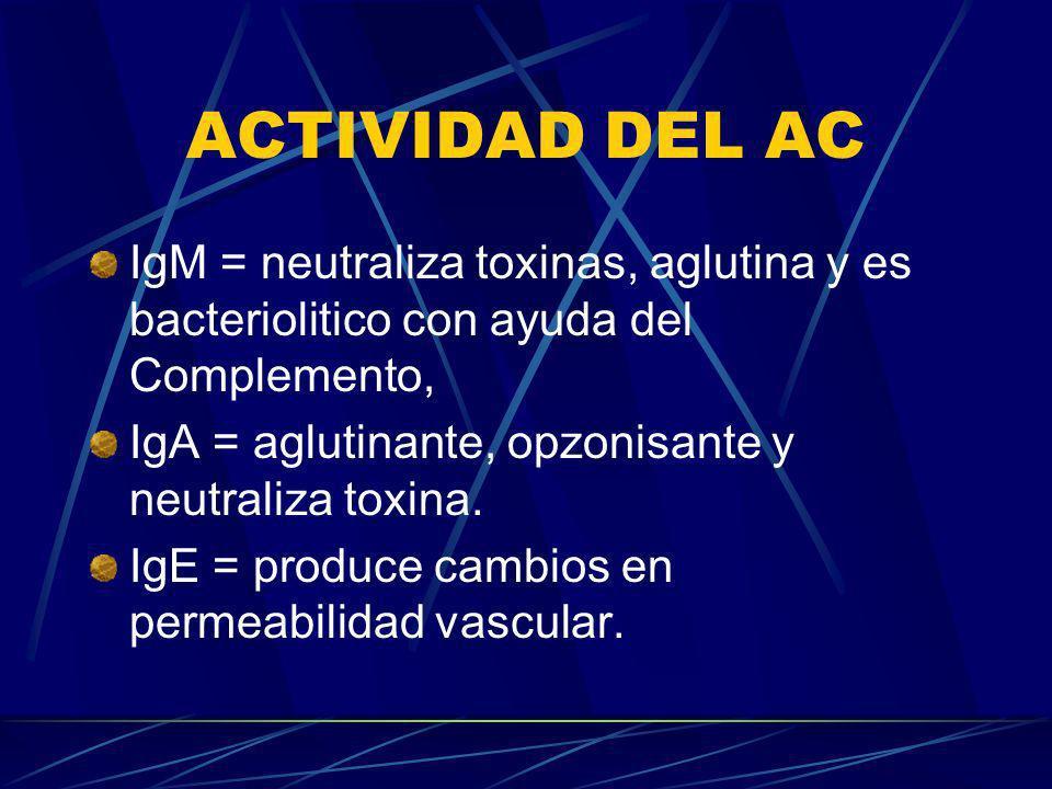 ACTIVIDAD DEL AC IgM = neutraliza toxinas, aglutina y es bacteriolitico con ayuda del Complemento, IgA = aglutinante, opzonisante y neutraliza toxina.