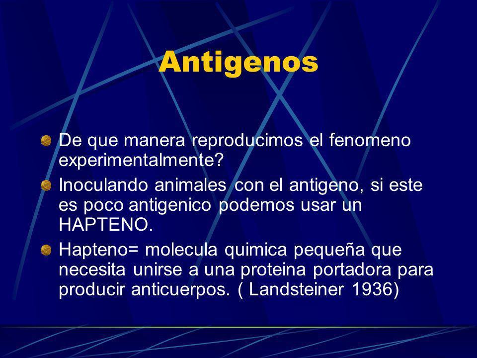 Antigenos De que manera reproducimos el fenomeno experimentalmente? Inoculando animales con el antigeno, si este es poco antigenico podemos usar un HA