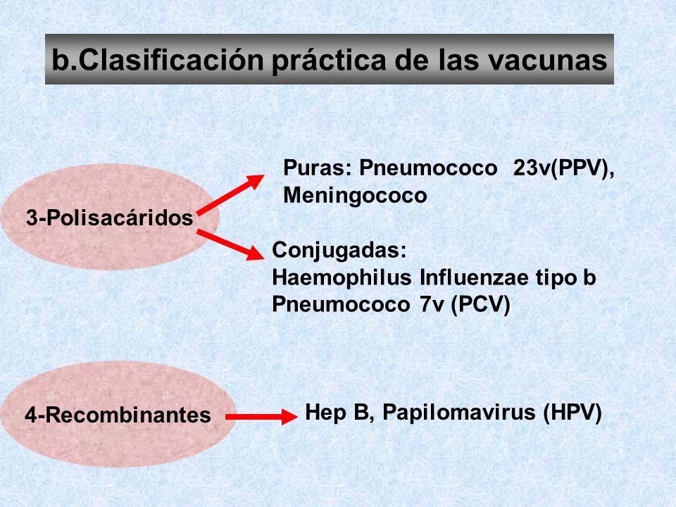 b.Clasificación práctica de las vacunas 3-Polisacáridos 4-Recombinantes Puras: Pneumococo 23v(PPV), Meningococo Conjugadas: Haemophilus Influenzae tip