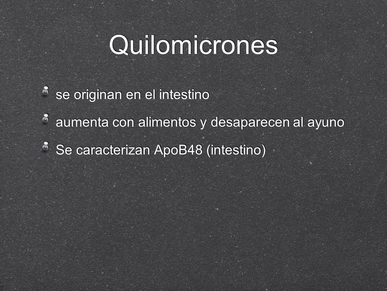 Quilomicrones se originan en el intestino aumenta con alimentos y desaparecen al ayuno Se caracterizan ApoB48 (intestino) se originan en el intestino