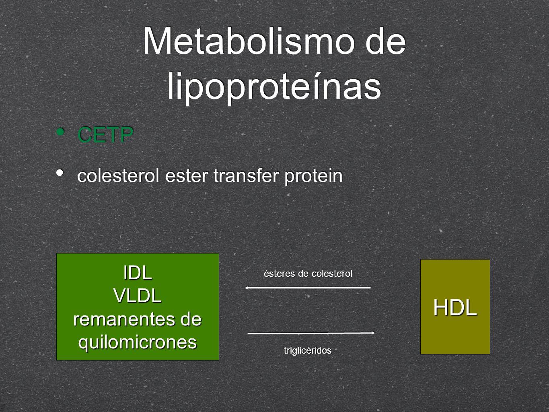 Metabolismo de lipoproteínas CETP colesterol ester transfer protein CETP colesterol ester transfer protein IDLVLDL remanentes de quilomicrones HDL ést