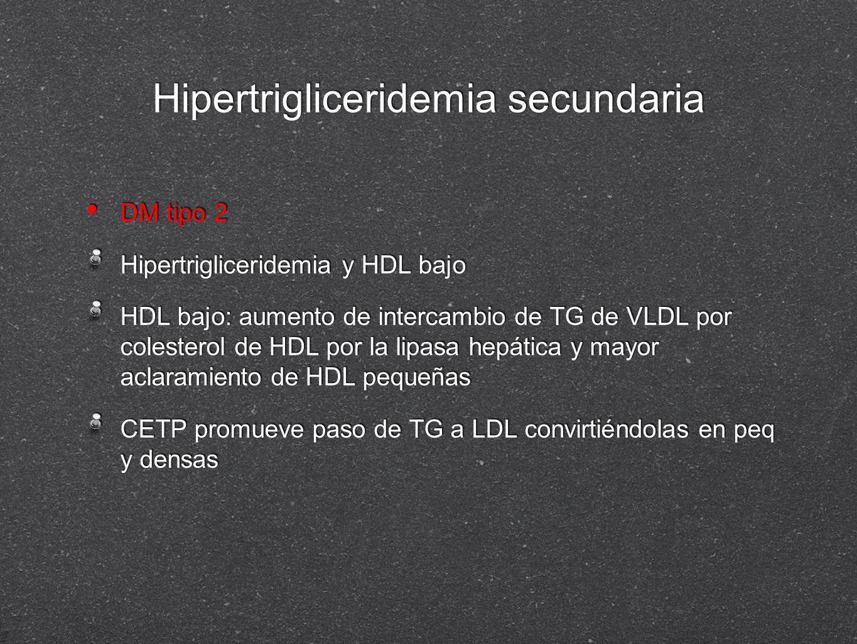 Hipertrigliceridemia secundaria DM tipo 2 Hipertrigliceridemia y HDL bajo HDL bajo: aumento de intercambio de TG de VLDL por colesterol de HDL por la