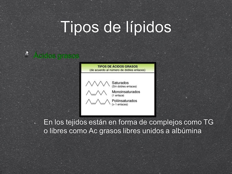 Transporte de lípidos exógenos y endógenos