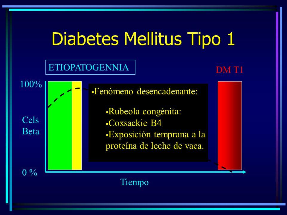 Diabetes Mellitus Tipo 1 ETIOPATOGENNIA 0 % 100% DM T1 Cels Beta Tiempo Fenómeno desencadenante: Rubeola congénita: Coxsackie B4 Exposición temprana a la proteína de leche de vaca.