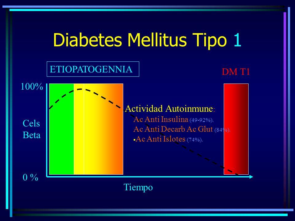 Diabetes Mellitus Tipo 1 ETIOPATOGENNIA 0 % 100% DM T1 Cels Beta Tiempo Actividad Autoinmune : Ac Anti Insulina (49-92%).
