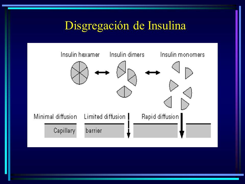 Disgregación de Insulina