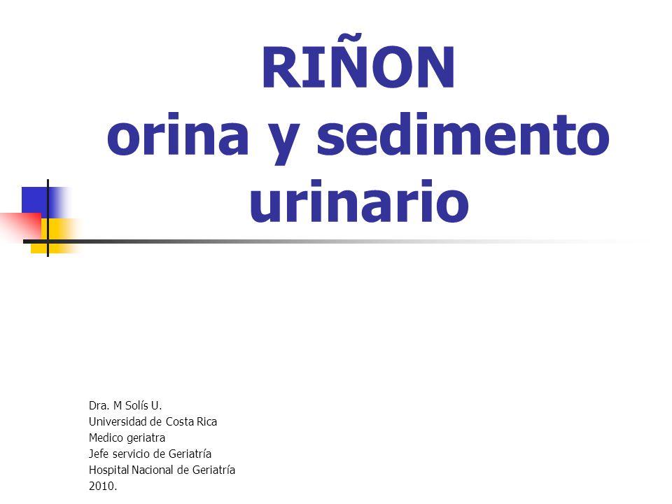 RIÑON orina y sedimento urinario Dra. M Solís U. Universidad de Costa Rica Medico geriatra Jefe servicio de Geriatría Hospital Nacional de Geriatría 2