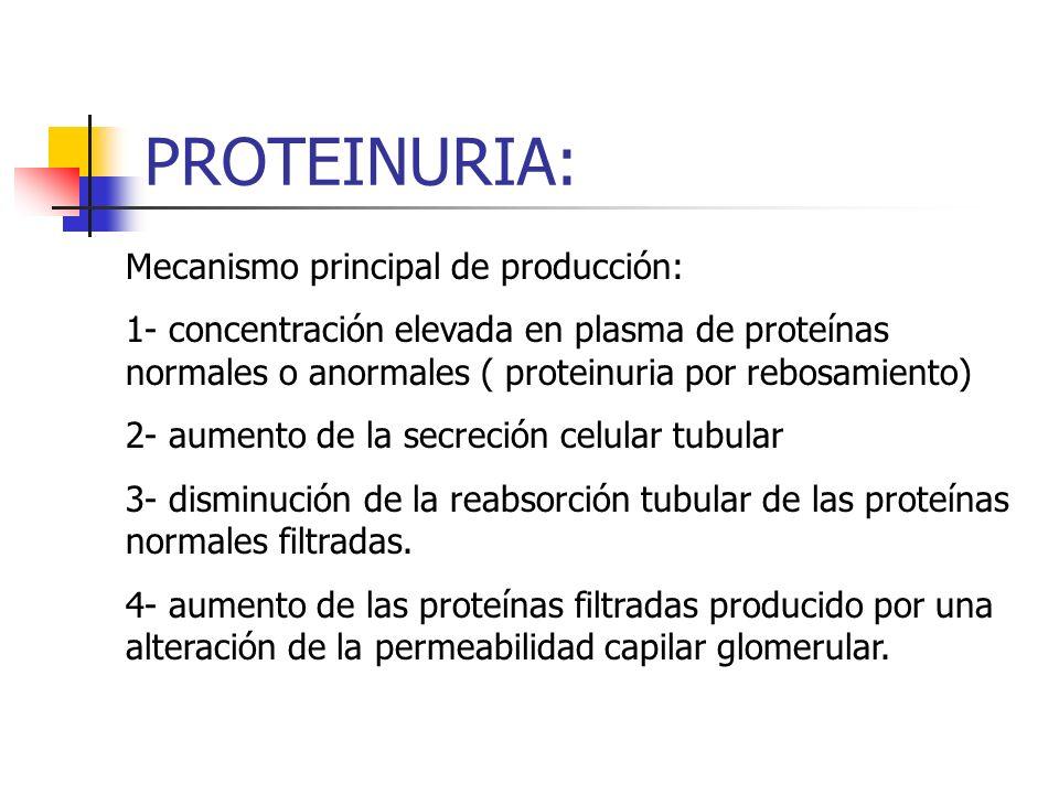 PROTEINURIA: Mecanismo principal de producción: 1- concentración elevada en plasma de proteínas normales o anormales ( proteinuria por rebosamiento) 2