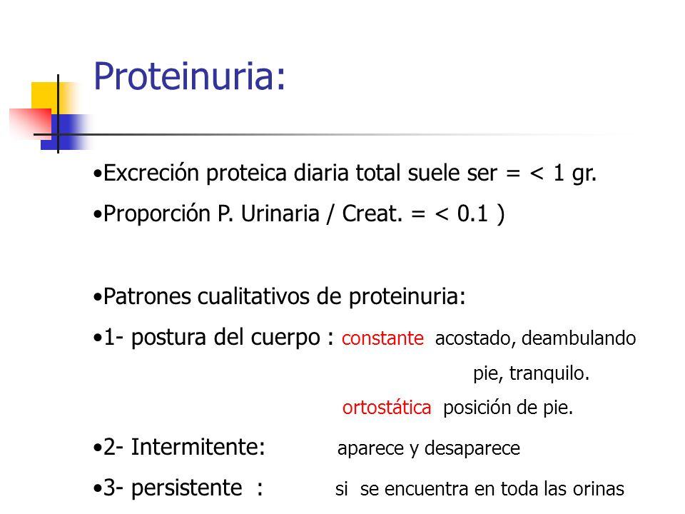 Proteinuria: Excreción proteica diaria total suele ser = < 1 gr. Proporción P. Urinaria / Creat. = < 0.1 ) Patrones cualitativos de proteinuria: 1- po