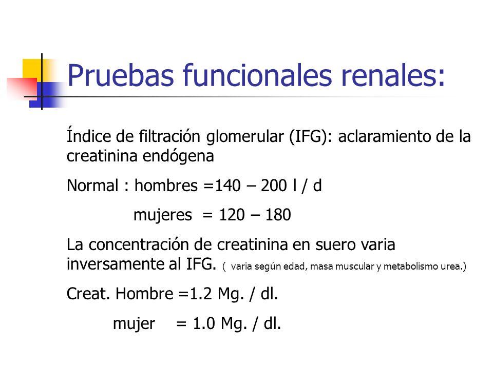 Pruebas funcionales renales: Índice de filtración glomerular (IFG): aclaramiento de la creatinina endógena Normal : hombres =140 – 200 l / d mujeres =