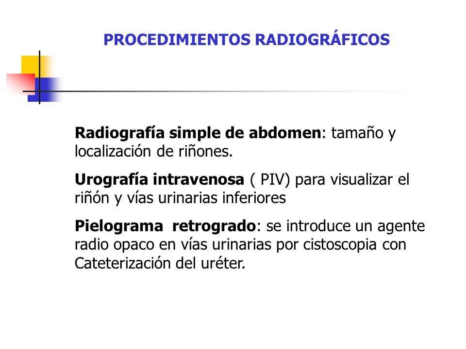 PROCEDIMIENTOS RADIOGRÁFICOS Radiografía simple de abdomen: tamaño y localización de riñones. Urografía intravenosa ( PIV) para visualizar el riñón y