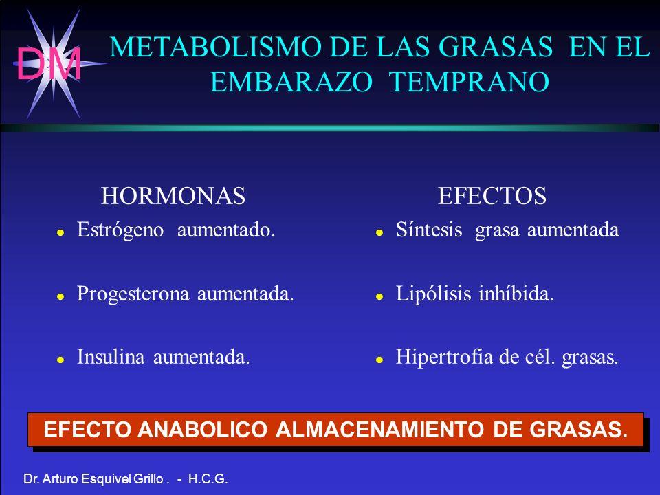 DM Dr. Arturo Esquivel Grillo. - H.C.G. METABOLISMO DE LAS GRASAS EN EL EMBARAZO TEMPRANO HORMONAS l Estrógeno aumentado. l Progesterona aumentada. l