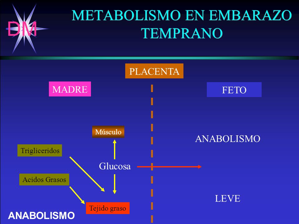 DM Dr.Arturo Esquivel Grillo. - H.C.G. EFECTOS DE LA DIABETES SOBRE EL FETO Anomalías congénitas.