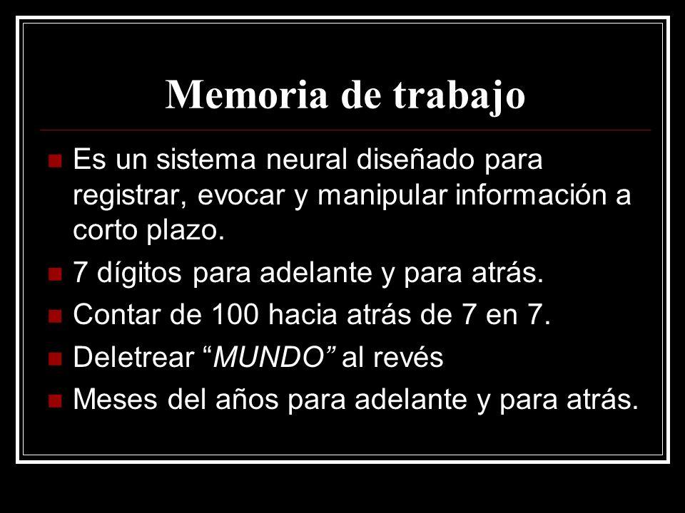 Memoria de trabajo Es un sistema neural diseñado para registrar, evocar y manipular información a corto plazo. 7 dígitos para adelante y para atrás. C