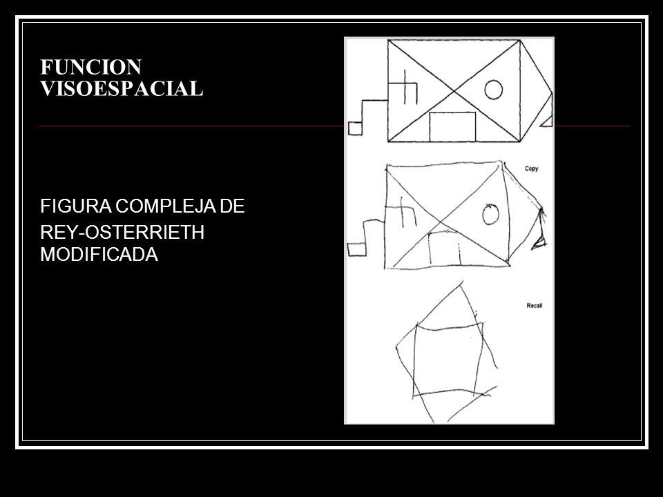 FUNCION VISOESPACIAL FIGURA COMPLEJA DE REY-OSTERRIETH MODIFICADA