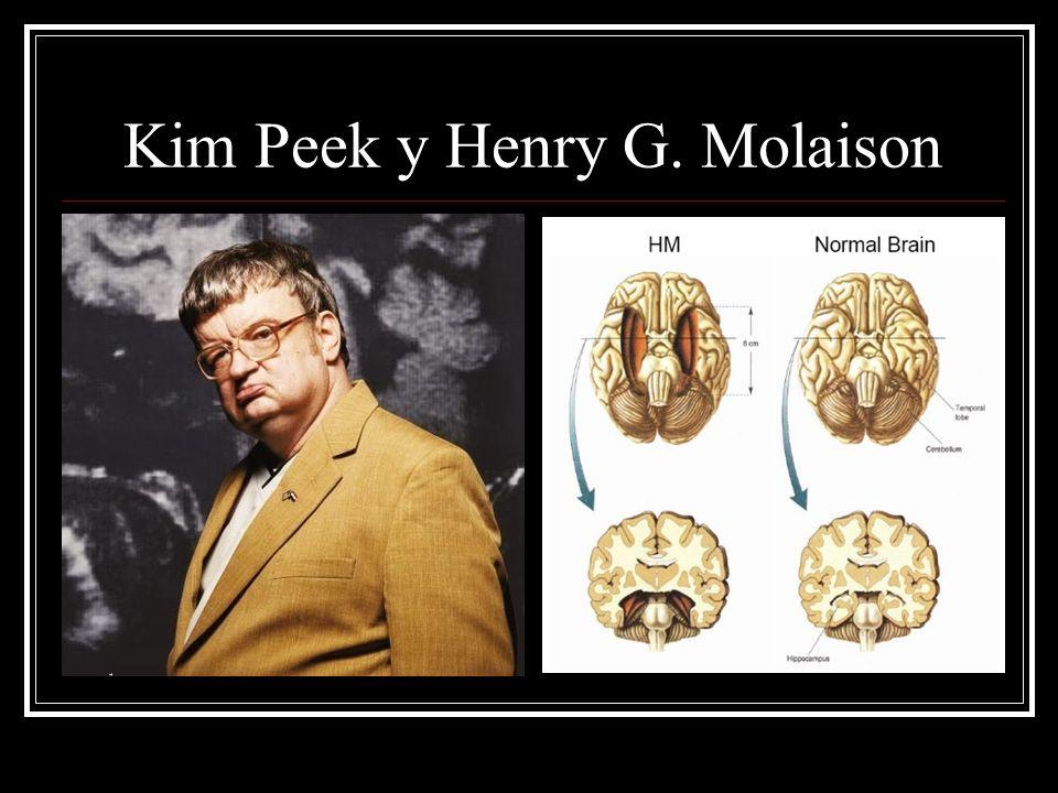 Esferas de la cognición Memoria Atención Lenguaje Funciones ejecutivas: cálculo, orientación, visoconstrucción, pensamiento abstracto, inhibición.
