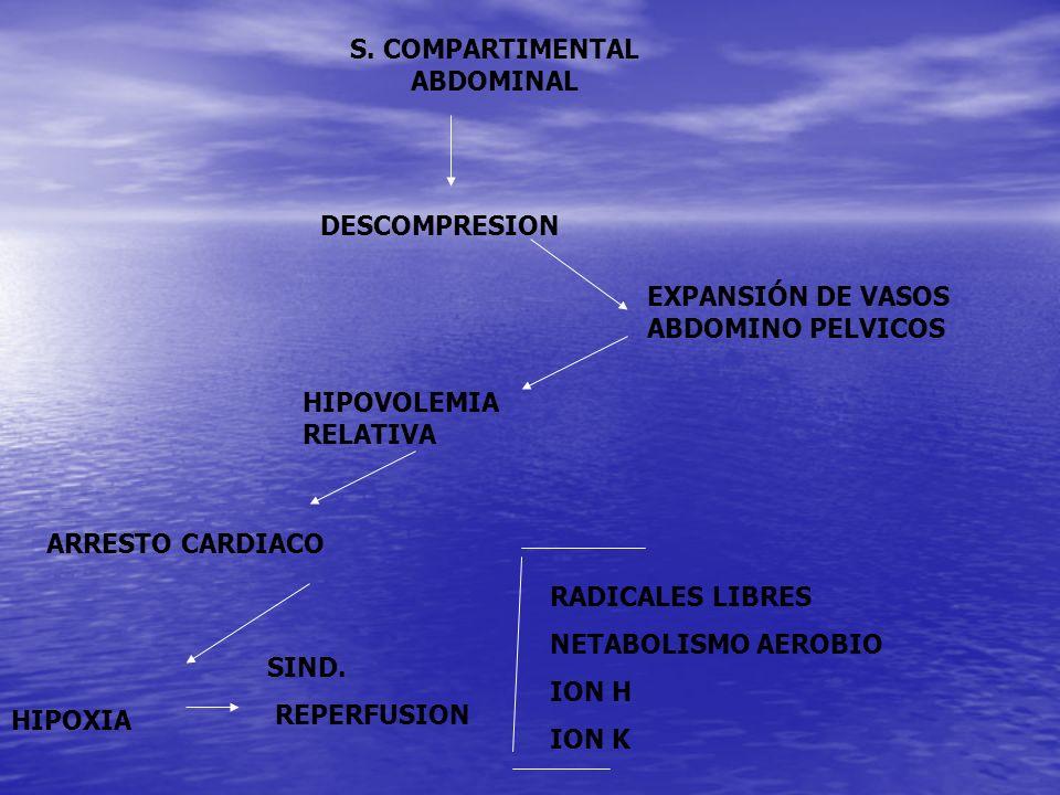 S. COMPARTIMENTAL ABDOMINAL DESCOMPRESION EXPANSIÓN DE VASOS ABDOMINO PELVICOS HIPOVOLEMIA RELATIVA ARRESTO CARDIACO HIPOXIA RADICALES LIBRES NETABOLI