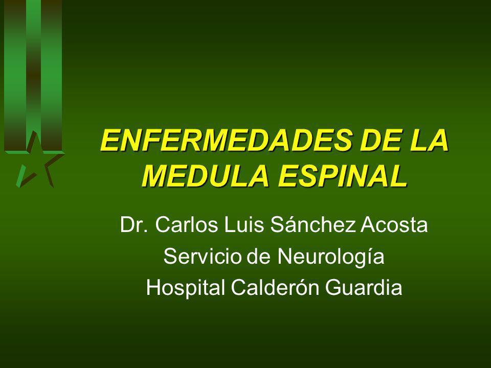 ENFERMEDADES DE LA MEDULA ESPINAL Dr. Carlos Luis Sánchez Acosta Servicio de Neurología Hospital Calderón Guardia