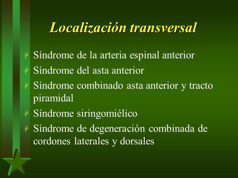 Localización transversal H Síndrome de la arteria espinal anterior H Síndrome del asta anterior H Síndrome combinado asta anterior y tracto piramidal